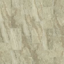 Shaw Floors Ceramic Solutions Veneto 12×24 Ginger 00700_CS95W