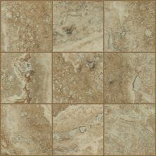 Shaw Floors Ceramic Solutions Veneto 6×6 Ginger 00700_CS96W