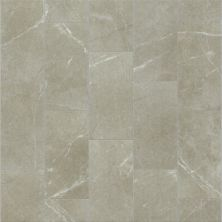 Shaw Floors Ceramic Solutions Visionary 12×24 Oasis 00501_CS97H