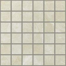 Shaw Floors Ceramic Solutions Visionary Mosaic Retreat 00120_CS98H