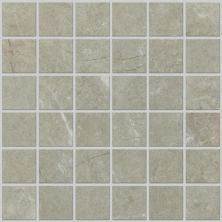 Shaw Floors Ceramic Solutions Visionary Mosaic Oasis 00501_CS98H