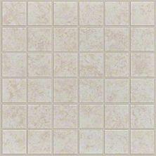 Shaw Floors Ceramic Solutions Empire Mosaic Latte 00200_CS99Q