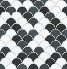 Shaw Floors Ceramic Solutions Geoscapes Fan Black/White 00151_CS99V