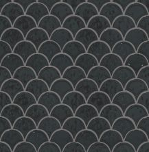 Shaw Floors Ceramic Solutions Geoscape Fan Black 00555_CS99V