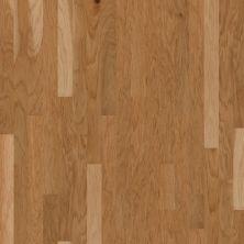 Shaw Floors Shaw Design Center Rustique 3 1/4 Honey Spice 00132_DC132