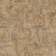 Shaw Floors Shaw Design Center Refuge Tile Caramel 00201_DC882
