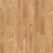 Shaw Floors Shaw Design Center Inglefield Plank 6 Solana Beach 00240_DC915