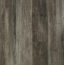 Shaw Floors Dr Horton Caspian Plus Harbour Bay 05030_DR010