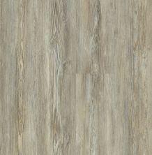 Shaw Floors Dr Horton Caspian Plus Legend Pine 05031_DR010
