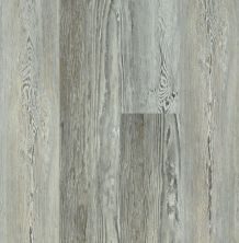 Shaw Floors Dr Horton Caspian Plus Ashland Pine 05032_DR010