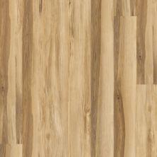 Shaw Floors Dr Horton Arabesque Pla + Castagna 00133_DR013