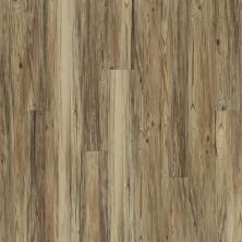 Shaw Floors Dr Horton Arabesque Pla + Taburno 00151_DR013