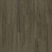 Shaw Floors Dr Horton Arabesque Pla + Presanella 00503_DR013