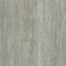 Shaw Floors Dr Horton Arabesque Pla + Leone 00538_DR013