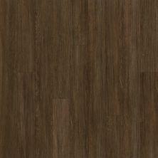Shaw Floors Dr Horton Arabesque Pla + Terza Grande 00733_DR013