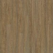 Shaw Floors Dr Horton Arabesque Pla + Marmolada 00782_DR013