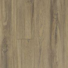 Shaw Floors Dr Horton Hawthorne HD Plus Fiano 00587_DR015