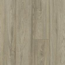 Shaw Floors Dr Horton Hawthorne HD Plus Pisa 01027_DR015