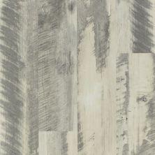 Shaw Floors Dr Horton Ballantyne Plus Click Gray Barnwood 00142_DR036
