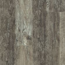 Shaw Floors Dr Horton Ballantyne Plus Click Smoky Oak 00556_DR036