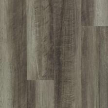 Shaw Floors Dr Horton Ballantyne Plus Click Oyster Oak 00591_DR036