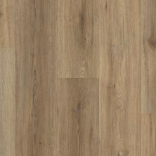 Shaw Floors Dr Horton Ballantyne Plus Click Wild Dunes 07089_DR036