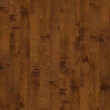 Shaw Floors Dr Horton Kings Pointe Surfside 00460_DR626
