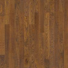 Shaw Floors Dr Horton Mountain City 4 Copper 00272_DR655