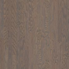Shaw Floors Dr Horton Ann Arbor 3.25 Weathered 00543_DR667