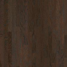 Shaw Floors Dr Horton Ann Arbor 3.25 Coffee Bean 00938_DR667