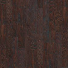Shaw Floors Dr Horton Ann Arbor 5 Coffee Bean 00938_DR668