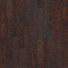 Shaw Floors Dr Horton Ann Arbor 5 Coffee Bean 00938_DR668