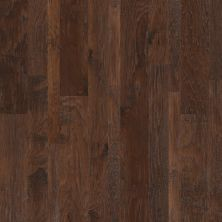 Shaw Floors Dr Horton Delaware 2 – Mixed Weathered Saddle 00941_DR679