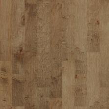Shaw Floors Dr Horton Chappell Hill Buckskin 02005_DR688