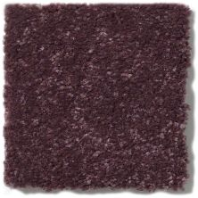 Shaw Floors Secret Escape I 15′ Amethyst 00911_E0049