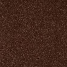 Shaw Floors Secret Escape II 15′ Raisin 00709_E0051