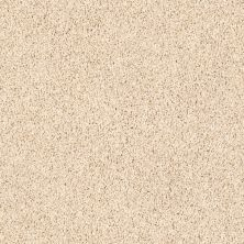 Shaw Floors Lonestar Putty 00106_E0113