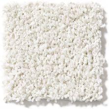 Shaw Floors Lonestar Simply White 00121_E0113