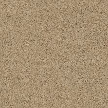 Shaw Floors Lonestar Oatmeal 00125_E0113