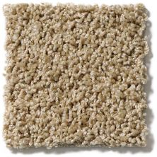 Shaw Floors Lonestar Oatmeal 00125_E0113