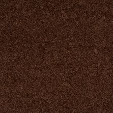 Shaw Floors Lonestar Mocha 00708_E0113