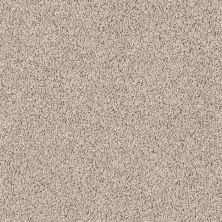 Shaw Floors Lonestar Tasteful Taupe 00721_E0113
