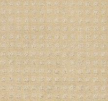 Shaw Floors Nottingham Honeycomb 00142_E0116