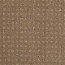 Shaw Floors Nottingham Perfect Beige 00703_E0116