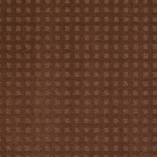 Shaw Floors Nottingham Mocha Chip 00706_E0116