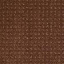 Shaw Floors Nottingham Mocha Chip 00706_E0116