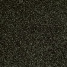 Shaw Floors Dreamin' 12′ Jaden 00302_E0121
