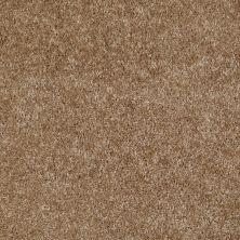 Shaw Floors Dreamin' 12′ Bungalow 00701_E0121