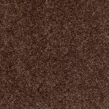 Shaw Floors Dreamin' 12′ Montana 00714_E0121