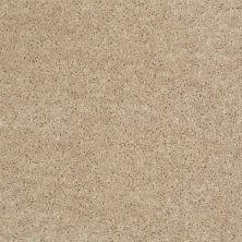 Shaw Floors All Star Weekend I 15′ Flax Seed 00103_E0141